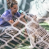 secret-garden-sigfried-roy-tracy-lee-lions-tiger-cubs-dolphins-124