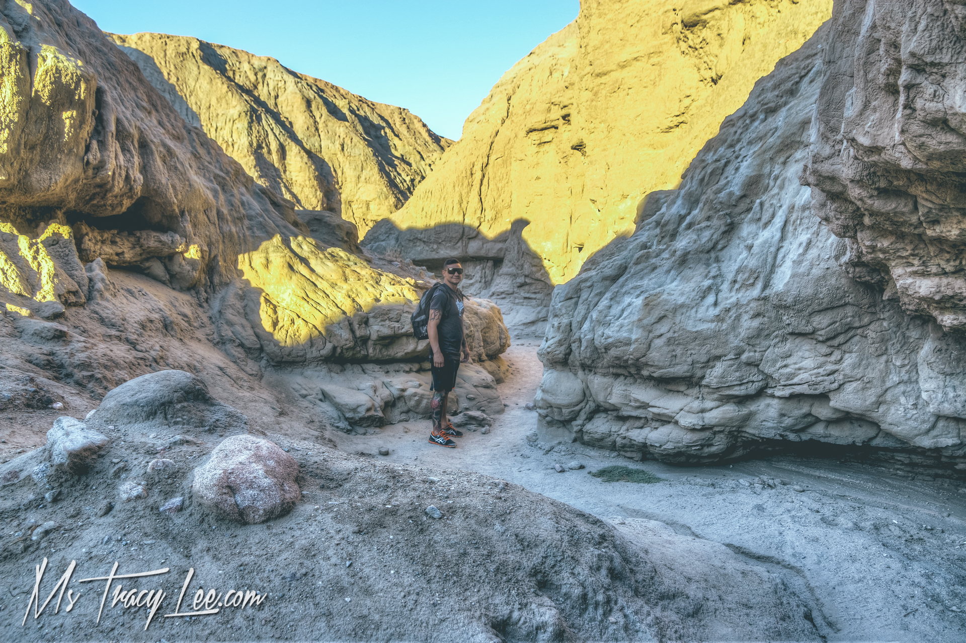 In Search of Mythical Creatures in Anza Borrego