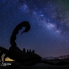 anza-borrego-springs-milky-way-sculpture-dragon-serpent-102