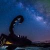 anza-borrego-springs-milky-way-sculpture-dragon-serpent-104