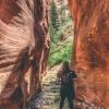 kanarra-creek-falls-kanarraville-slot-canyon-utah-161