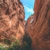 kanarra-creek-falls-kanarraville-slot-canyon-utah-164