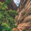 kanarra-creek-falls-kanarraville-slot-canyon-utah-167