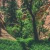 kanarra-creek-falls-kanarraville-slot-canyon-utah-168