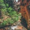 kanarra-creek-falls-kanarraville-slot-canyon-utah-169