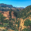 canyoneering-subway-zion-top-down-utah-rappelling-113