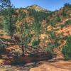 canyoneering-subway-zion-top-down-utah-rappelling-117