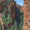 canyoneering-subway-zion-top-down-utah-rappelling-128