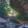 canyoneering-subway-zion-top-down-utah-rappelling-135