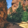 canyoneering-subway-zion-top-down-utah-rappelling-138