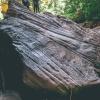 canyoneering-subway-zion-top-down-utah-rappelling-146
