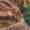 canyoneering-subway-zion-top-down-utah-rappelling-151