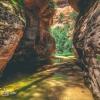 canyoneering-subway-zion-top-down-utah-rappelling-168