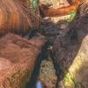 canyoneering-subway-zion-top-down-utah-rappelling-176