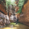canyoneering-subway-zion-top-down-utah-rappelling-186