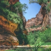 canyoneering-subway-zion-top-down-utah-rappelling-188