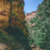 canyoneering-subway-zion-top-down-utah-rappelling-189