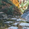 canyoneering-subway-zion-top-down-utah-rappelling-196