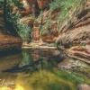 canyoneering-subway-zion-top-down-utah-rappelling-199
