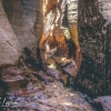 canyoneering-subway-zion-top-down-utah-rappelling-207
