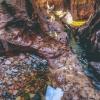 canyoneering-subway-zion-top-down-utah-rappelling-214
