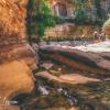 canyoneering-subway-zion-top-down-utah-rappelling-236