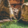 canyoneering-subway-zion-top-down-utah-rappelling-260