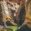 canyoneering-subway-zion-top-down-utah-rappelling-261