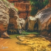 canyoneering-subway-zion-top-down-utah-rappelling-263
