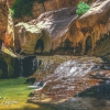 canyoneering-subway-zion-top-down-utah-rappelling-266