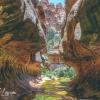 canyoneering-subway-zion-top-down-utah-rappelling-270