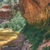 canyoneering-subway-zion-top-down-utah-rappelling-276