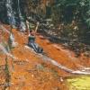 canyoneering-subway-zion-top-down-utah-rappelling-285