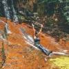 canyoneering-subway-zion-top-down-utah-rappelling-289