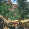canyoneering-subway-zion-top-down-utah-rappelling-298