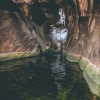 the-maze-red-rock-las-vegas-canyoneering-ice-cube-canyon-307