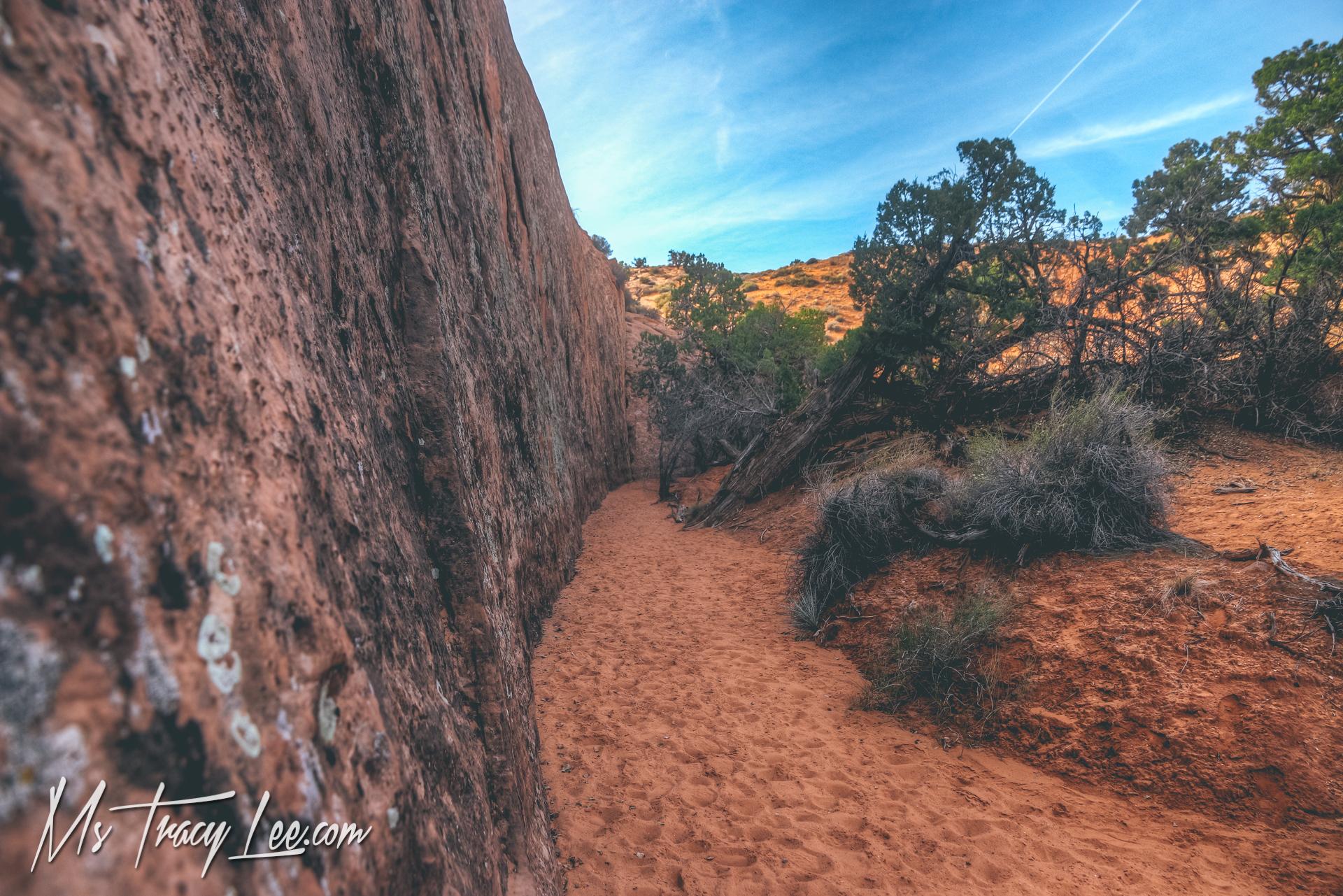Spooky slot canyon escalante