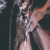 escalante-spooky-peekaboo-slot-canyon-brimstone-gulch-utah-139