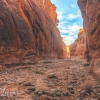 escalante-spooky-peekaboo-slot-canyon-brimstone-gulch-utah-152