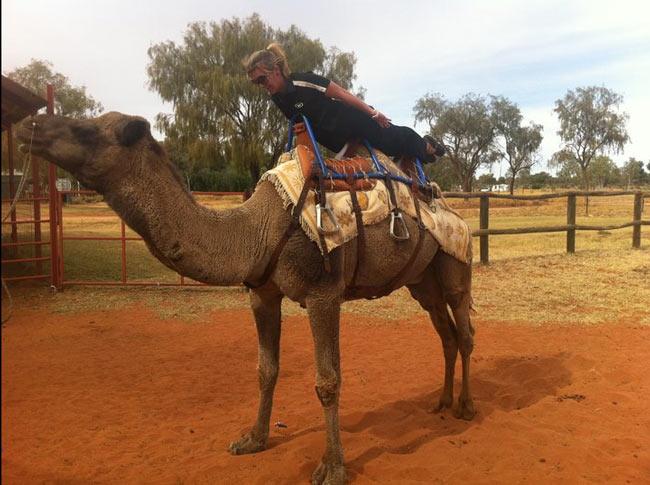 planking-camel-650
