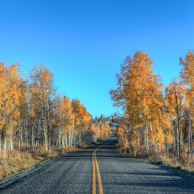 October in Zion has to…