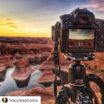 #Repost @tracyleephotos ・・・ My view…