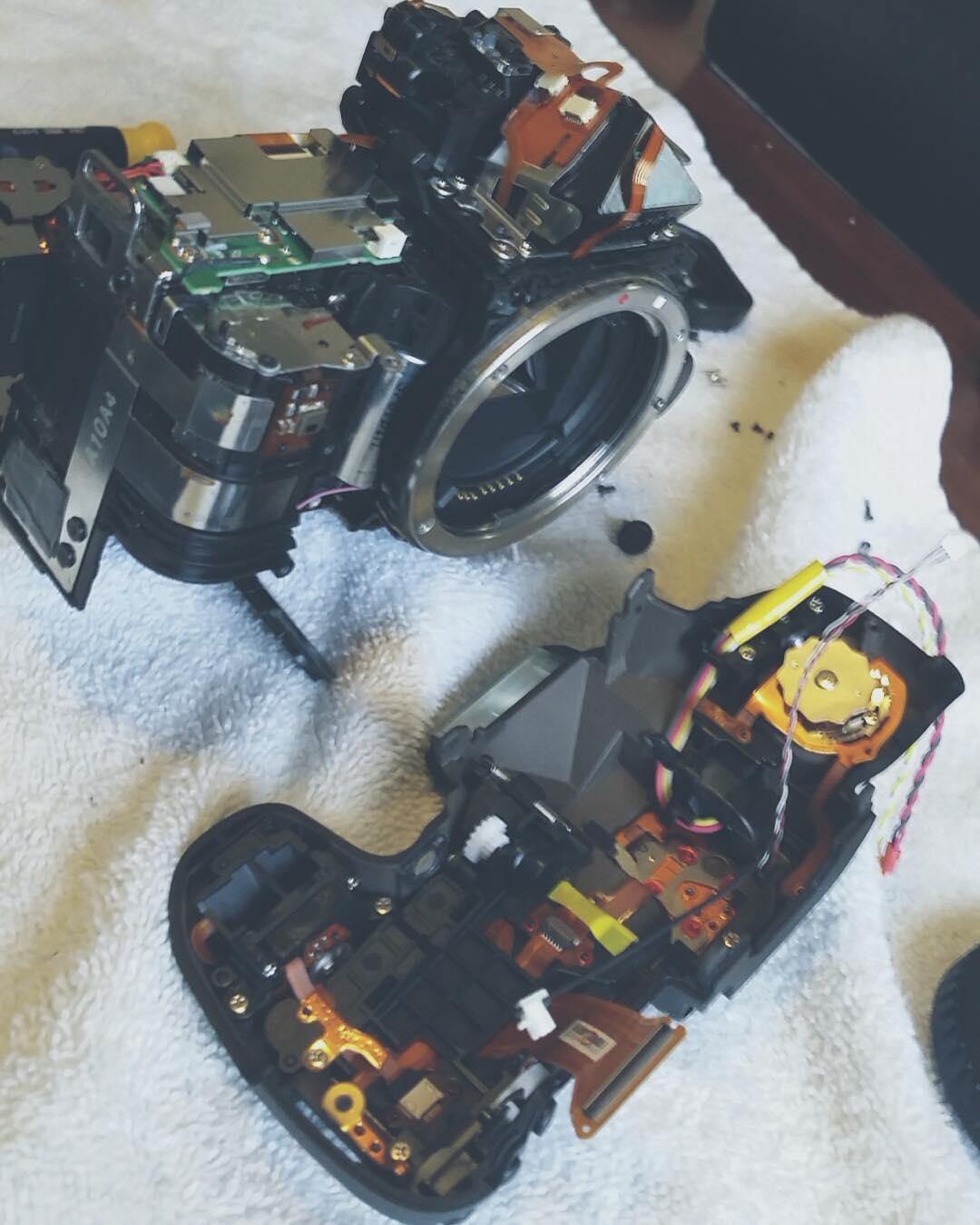 My camera last week…. (Don't…