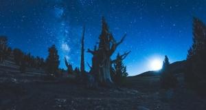 Yup, Moonlight, Milky Way and...